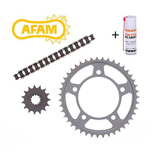 Preisvergleich Produktbild Ketten Kit Kettensatz Stahl AFAM 428 M RV 90 Ritzel Kettenrad Kette 15-46-110 + Kettenpflegespray