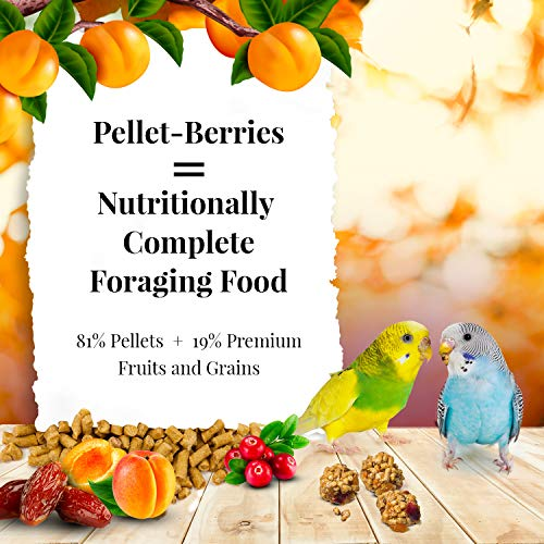 LAFEBER'S Pellet-Berries Pet Bird Food, Made with Non-GMO and Human-Grade Ingredients, for Parakeets, 10 oz