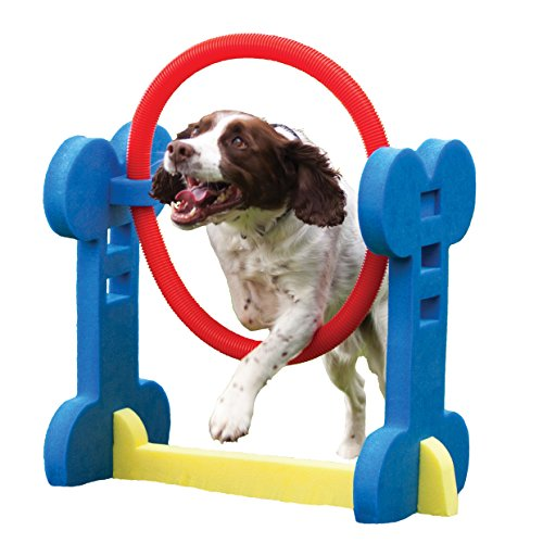 Rosewood 02497 Agility-Ring für kleine Hunde