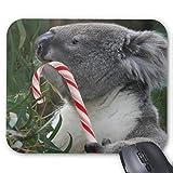 Mouse-Pad 24*20cm | Qualit?ts-Mauspad aus strapazierf?higem Kunststoff mit rutschfester Unterseite aus Zellkautschuk - passend f¨¹r alle g?ngigen Mouse-Australien Weihnachten Koalab?r