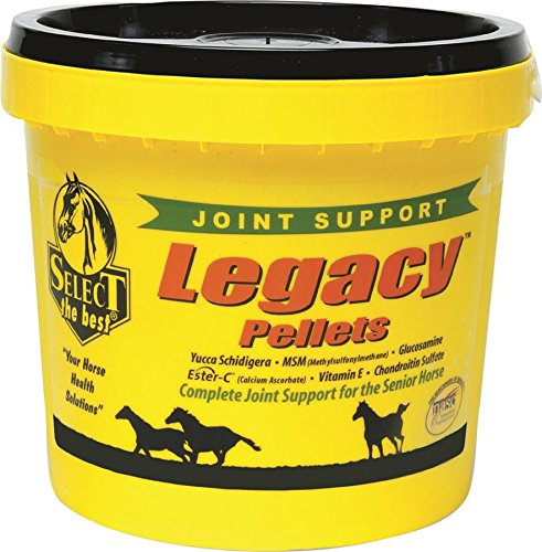 RICHDEL 784299542006 Legacy Pellets Joint Support for Senior Horses, 20 lb