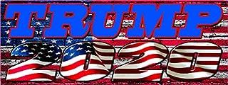 Nostalgia Decals Trump Punisher 2020 Bumper Sticker (8