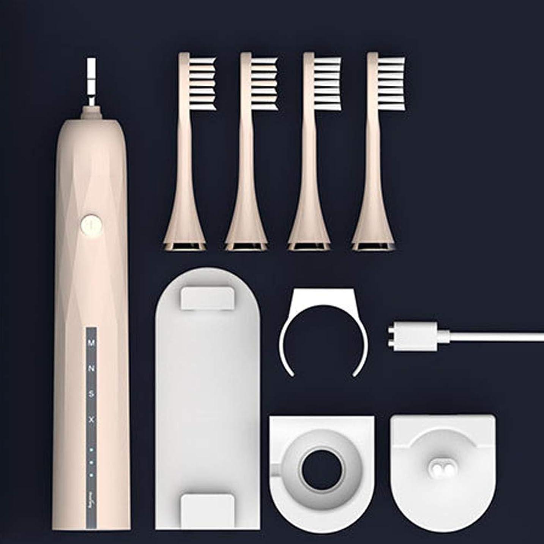 バレーボール高価な締め切りIP67防水デュポンソフトの髪を持つスマート充電式電動歯ブラシ Alysays