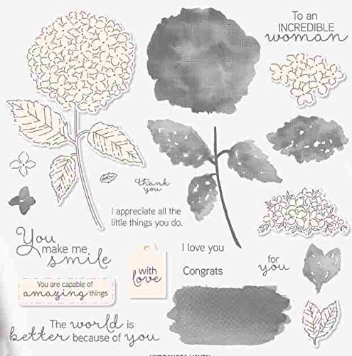 Photopolymer Stamps Set Hydrangea Haven Metal Cutting Die and Coordinating Stamp for Scrapbooking Making - English photopolymer DIY Abum