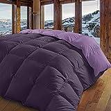 Energy Colors Textil - Hogar Edredón nórdico de 350 g Reversible (Bicolor). Siber (Malva, Cama 135/150-240_x_260_cm)