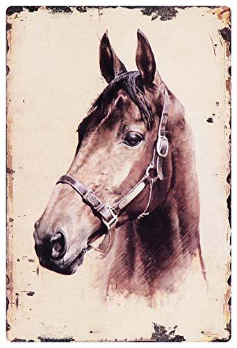 Metalen bord 20x30cm paard hoofd portretpaarden rijder rijden bord bruin Tin Sign
