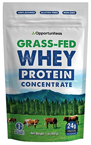 Grass Fed Whey Protein Powder Concentrate - Unflavored & Unsweetened - Pure Protein Supplement for Drink, Smoothie, Shake, Cooking & Baking - Non GMO, Hormone Free & Gluten Free - 1 Pound