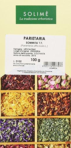 Parietaria Sommità Taglio Tisana - 100 g - Prodotto made in Italy