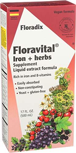 Salus Floradix, supplément de fer avec extraits d'herbes, 500 ml