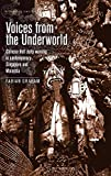 Voices from the underworld: Chinese hell deity worship in contemporary Singapore and Malaysia (Alternative Sinology)
