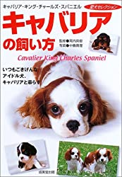 キャバリアの飼い方―いつもごきげんなアイドル犬、キャバリアと暮らす (愛犬セレクション)[Amazon]
