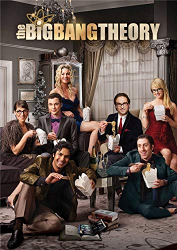 linbindeshoop The Big Bang Theory Poster Movie Wall Stickers Paper Prints High Definition Clear Picture Home Decoration (LW-3332) 40x60cm No frame