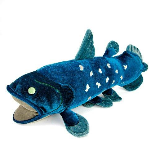 カロラータ シーラカンス ぬいぐるみ 古代魚 Mサイズ 21cm×15.5cm×36cm