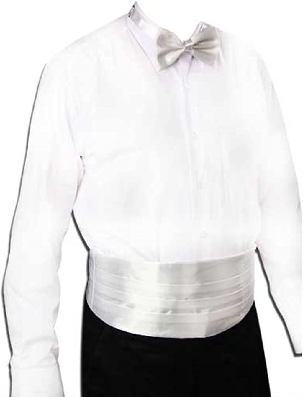 JJZXC Gentleman Solid Wide Silk Satin Elastic Belly Band Tuxedo Cummerbund Commercial Banquet Model Business Elite (Color : B)