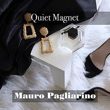 Quiet Magnet