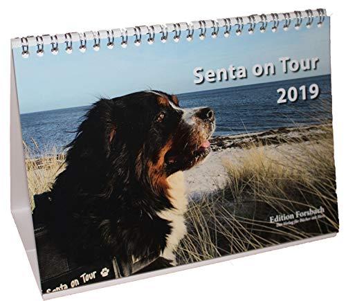 Senta on Tour 2019 - Fotokalender DIN A5