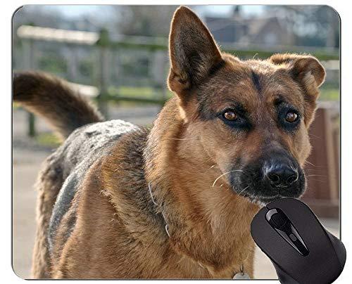 Schäferhund-Mausunterlage, Hundebüro-Mausunterlage