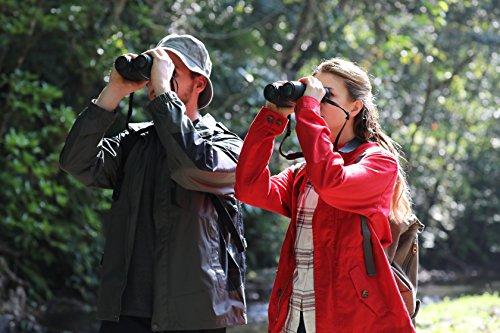 Canon 10x32 IS Image Stabilising Binoculars - Black