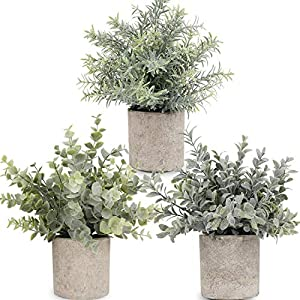C APPOK Artificial Potted Plants Mini Fake Eucalyptus Plant, Small Plastic Green Grass with Pot, Faux Rosemary Plants for Home Decor, Indoor, Table Decoration – 3 Pack, Flocking Green