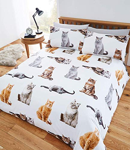 Restmor at Home Crazy Cat Animal Easy Care printed/pattern Single Duvet Cover and 1 Pillowcase set Polycotton by Fusion