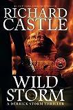 Wild Storm (a Derrick Storm Novel) (Castle) (Derrick Storm 5) by Richard Castle (2014-05-16)
