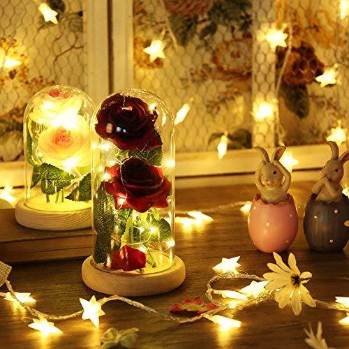 Rose Kunstseide Sparkle Rose mit Glas Lampenschirm 20-LED Streifen Licht Großes Geschenk zum Valentinstag Muttertag Weihnachten Geburtstag (Rosa)
