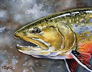 Brook Trout Fly Fishing Art Print by Watercolor Artist DJ Rogers