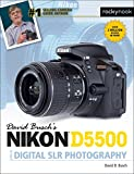 David Busch's Nikon D5500 Guide to Digital SLR Photography (The David Busch Camera Guide Series)
