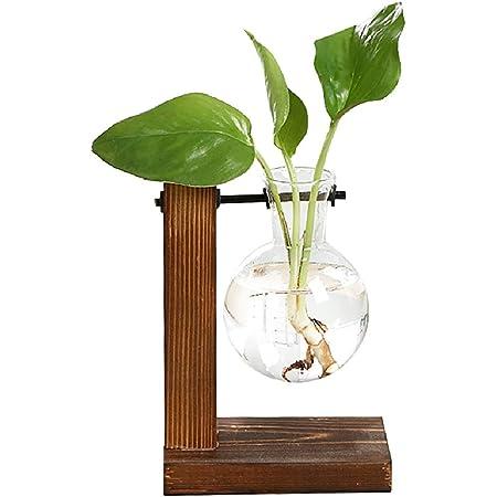 Magiin Florero de Vidrio Macetero con Soporte de Madera Jarrón de Vidrio Transparente para Jardinería Planta de Hidroponía Decoración de Escritorio Casa Boda (A)