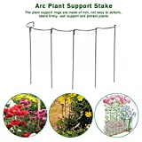 Plants Support,Arc Rusty Bow Plant Supports For Peonies, Hydrangea, Roses,Strong Metal Garden Supports,Arc...