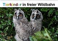 Tierkinder in freier Wildbahn (Wandkalender 2022 DIN A2 quer): Lustiger Nachwuchs in der Natur, stets neugierig auf neue Entdeckungen. (Monatskalender, 14 Seiten )