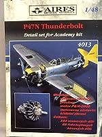 P47N サンダーボルト用レジン製 ディテールセット1:48 AIRES 未組立