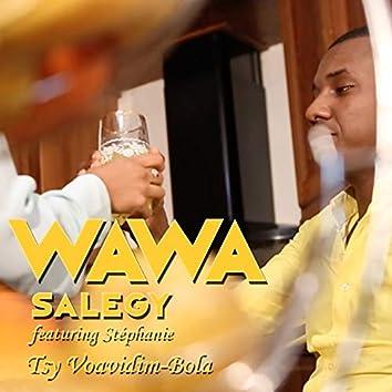 Tsy Voavidim-Bola