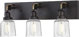 Progress Lighting P300228-143 Rushton Three-Light Bath & Vanity with Clear Glass, 9-1/2