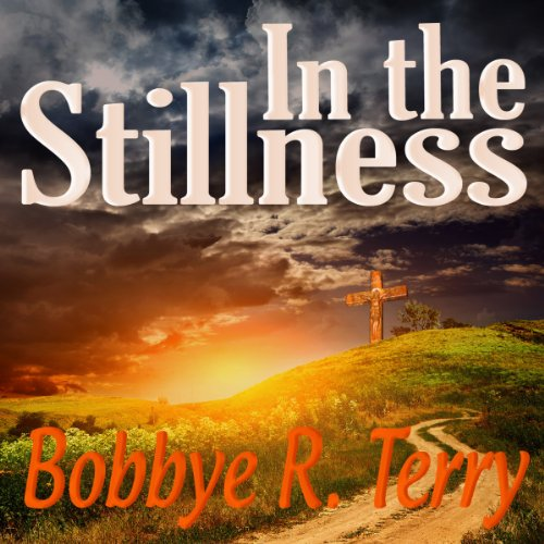 In the Stillness audiobook cover art