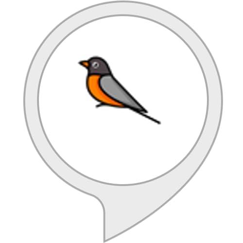 Ruido de pájaros