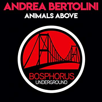 Animals Above