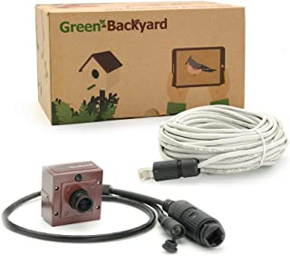GOLBONG Green-Backyard PoE IP Birdhouse Camera with Audio, HD 1080P Invisible Infrared, View on Mobile Phone, Tablet or PC