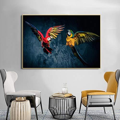 N / A Bellissimo Pappagallo Animale Poster murale Stampa Pittura Arte Immagine Tela Decorazione Soggiorno No Frame 50x70cm
