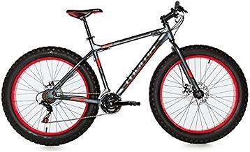 "Moma Bikes Bicicleta Montaña FAT 26""Alu, SHIMANO 21V"