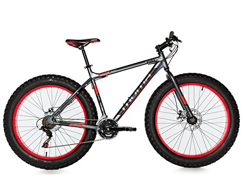 """Moma Bikes Bicicleta Montaña  FAT 26\""""Alu, SHIMANO 21V, Doble Freno Disco. (Varias Tallas)"""