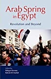 Arab Spring in Egypt: Revolution and Beyond...