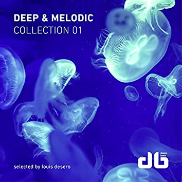 Deep & Melodic Collection 1