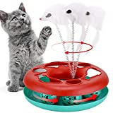 Cat Toys, Cat Toys for Indoor Cats,Interactive Kitten Toys Roller Tracks with Catnip Spring Pet Toy with Exercise Balls Teaser Mouse