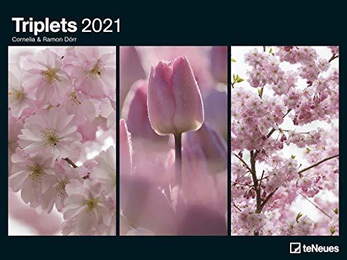 Triplets 2021 - Poster-Kalender - Wand-Kalender - 64x48