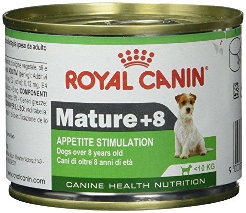 ROYAL CANIN Cibo Umido per Cane Mini Mature - 2340 gr