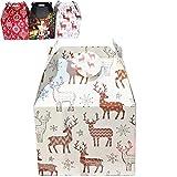 Gerimport Caja de cartón para Cesta navideña 3 diseños Surtidos 54 cm