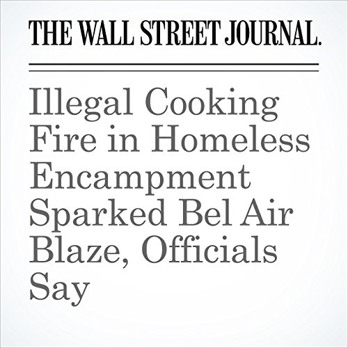 Illegal Cooking Fire in Homeless Encampment Sparked Bel Air Blaze, Officials Say copertina