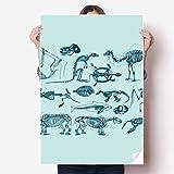DIYthinker Tierknochen Skizze Illustrations VinylWand-Aufkleber-Plakat-Wand Tapete Raum Aufkleber 80cm x 55cm Mehrfarbig