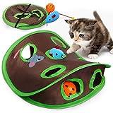 Vanplay Juguetes Gatos Interactivos Túnel Plegable y Juguetes con Nueve Hoyos Tunel, Ratones, Pelotas para Gatos